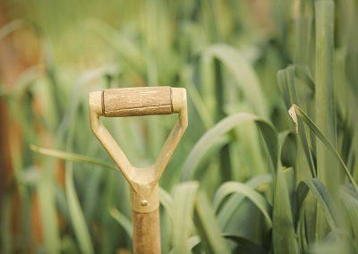 garden spade Ashley Farm Shop