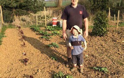 Home grown produce – Fresh Rhubarb
