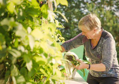 sue-garden-veg-1050px